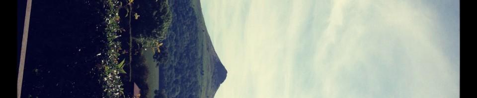Gisborough Moors